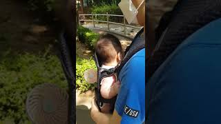 만두 아기띠 산책