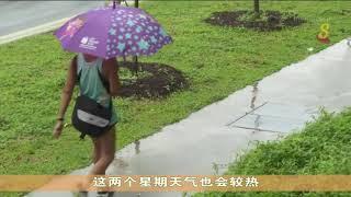 本地天气下来两周将继续炎热多雨
