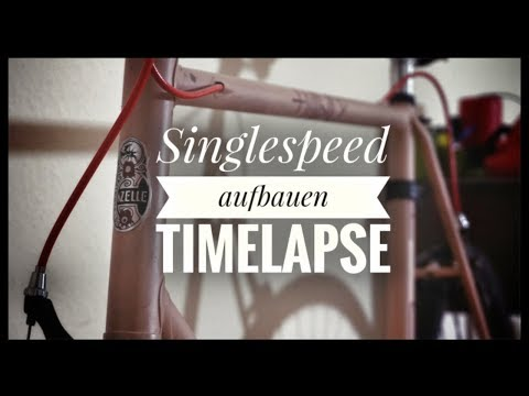 Siegfried singlespeed