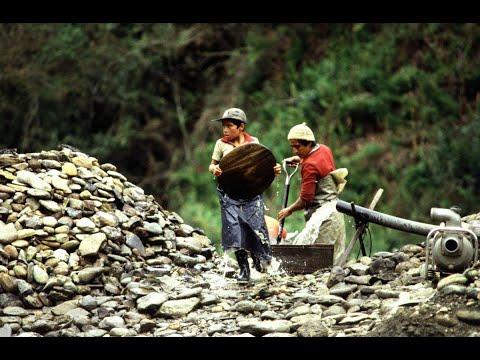 #الليلة | عمالة الأطفال تتخطي 150 مليون طفل عالميا  - 01:22-2017 / 9 / 21