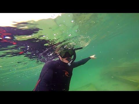 Поиск рыбы под водой