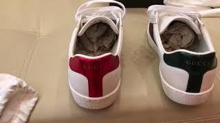 Обзор Gucci ace, футболка Saint Laurent, шорты Valentino - Видео от КТО ШАРИТ