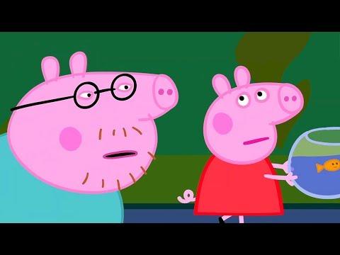 Свинка Пеппа на русском все серии подряд | Что сейчас в аквариуме? | Мультики