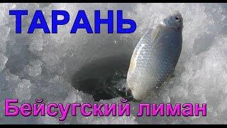 Полная версия.ТАРАНЬ.лиман, зима. Рыбалка. Ловля тарани на поплавочную удочку и кивок. fishing.