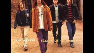 The Posies - Going Going Gone