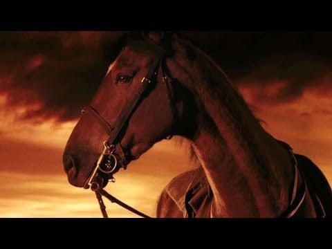 'War Horse' Trailer HD