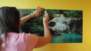 Gambar cover Cómo Colocar un foto mural de vinilo en la pared ( tamaño chico )
