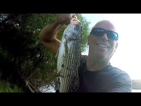 Delta Striper Bank Fishing 1