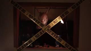 Die Antwoord - Don't Sleep (UNOFFICAL VIDEO)