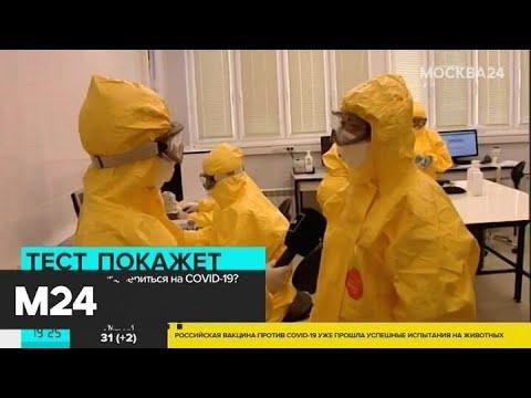 Сдать тест на коронавирус можно на дому - Москва 24