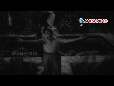 Diksha Songs - Merise Megha Maalika - NTR, Jamuna - Ganesh Videos from YouTube · Duration:  3 minutes 22 seconds