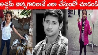 Mahesh Babu Daughter Sitara Imitate Him|అచ�...