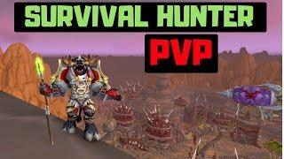 SURVIVAL HUNTER!  BG Commentary | BFA | PVP | 8.0.1