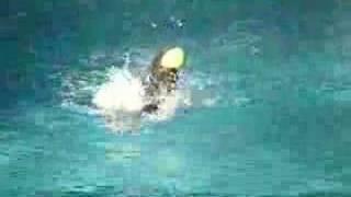 Tango - Diving In