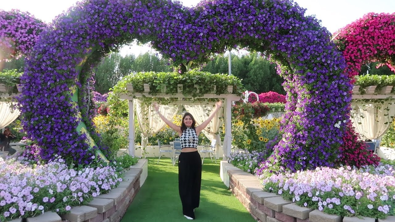 dubai miracle garden over 60