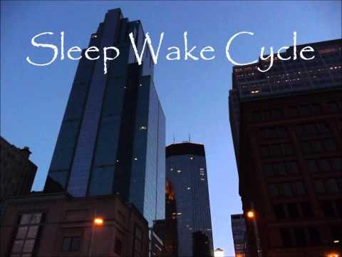 Soma^SynapSe - Sleep Wake Cycle