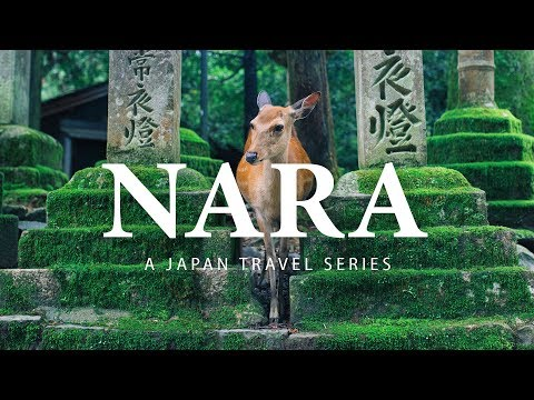 Nara |Part 4| Japan Travel Film - Sony A7III Vlog
