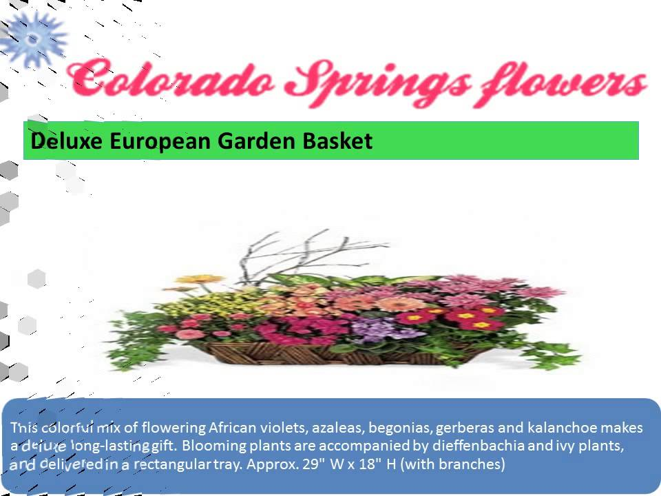 Colorado Spring Go Flower Shops Youtube