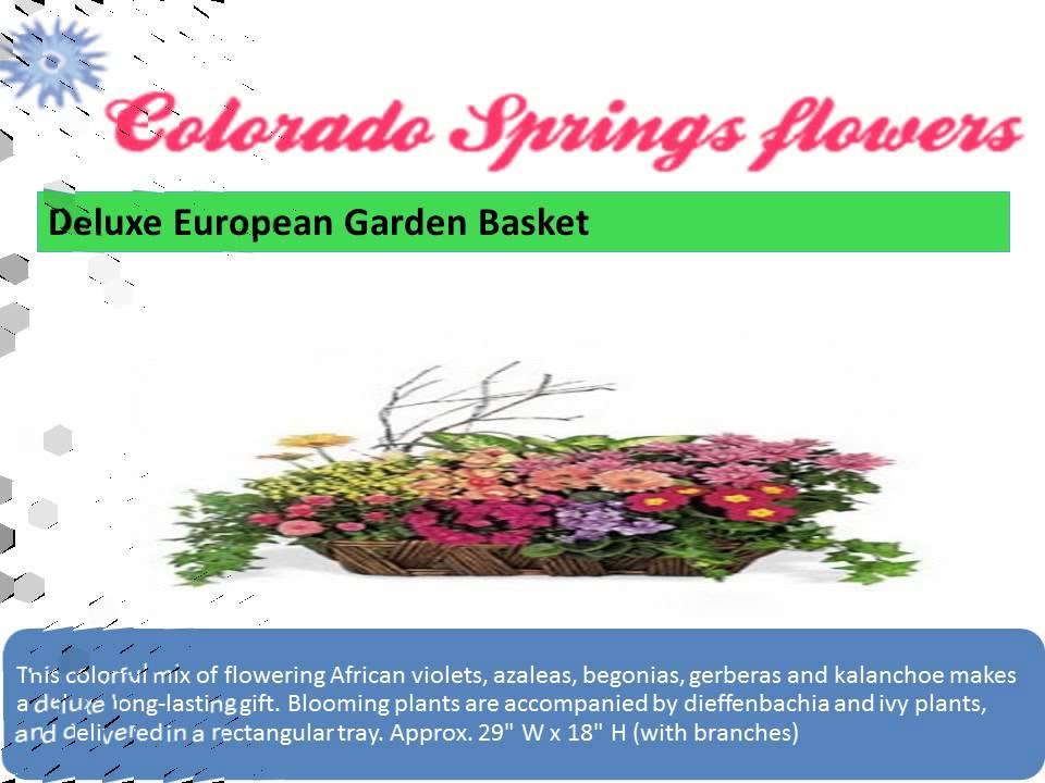 Colorado spring go flower shops youtube colorado spring go flower shops mightylinksfo