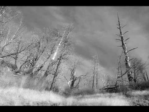 Skepticism - Nothing