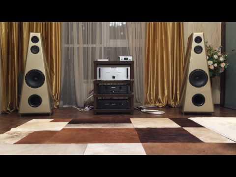 Audio research VT100 Respons Grand Dimension