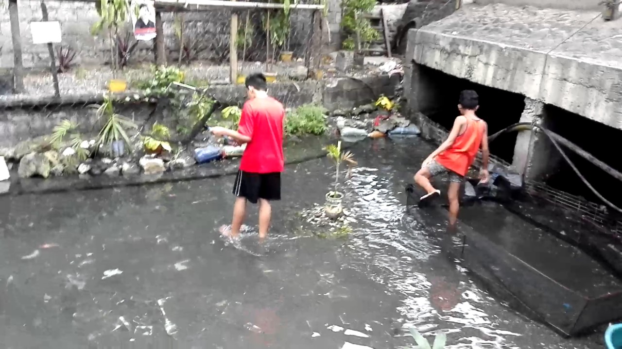 dirty canal turned into thriving koi pond in baslayan