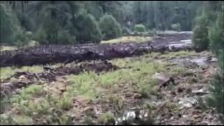 Raging Flash Flood Sweeps Towards Swimming Area in Arizona