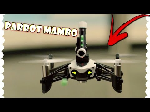 Parrot Mambo FPV: An HONEST Review (2018)
