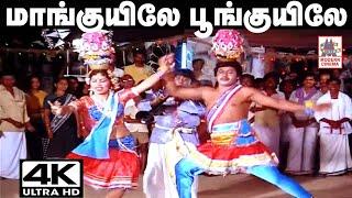 mankuyile poonkuyile 4K Song | karakattakaran | மாங்குயிலே பூங்குயிலே - கரகாட்டக்காரன் படப்பாடல்