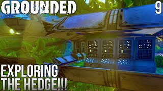 EXPLORING THE HEDGE!! | Grounded Gameplay/Let's Play E9