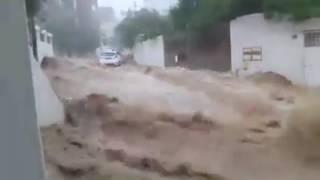 لطفك يا رب - تونس اليوم