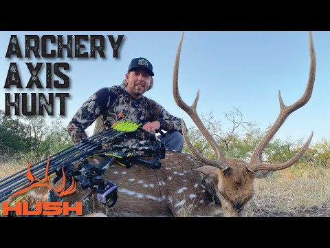 ARCHERY HUNTING AXIS DEER OVER A WATER HOLE!