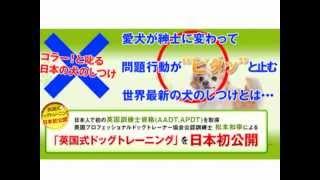 詳細はこちら http://www.infotop.jp/click.php?aid=44697&iid=43561 英...