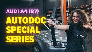 How to replace Brake Hose AUDI A4 (8EC, B7) Tutorial