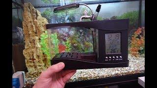 видео Маленькие аквариумы