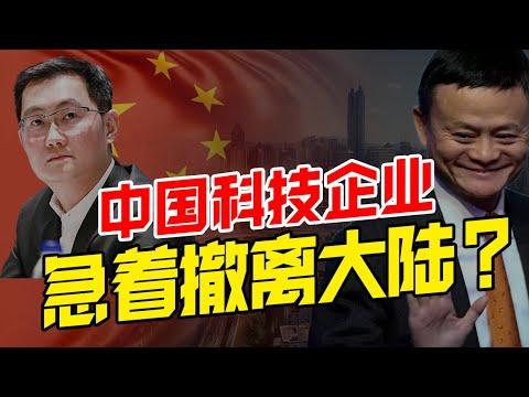 新加坡超越香港?成大陆企业出海首选?阿里腾讯为何急着撤离大陆?【华人百科EP13】