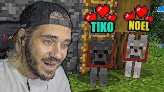 Τα ΣΚΥΛΑΚΙΑ ΜΟΥ στο Minecraft
