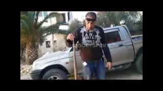 العثور اليوم 20 11 2013على الرقطاء السامه في بيت سوريك عمرها اكثر من 15 سنه مع جمال العمواسي