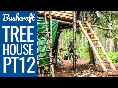 Bushcraft Treehouse 12 - Building a Staircase to The Bushcraft Camp Shelter!