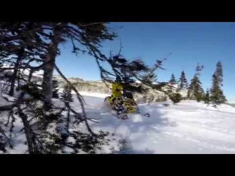 WhiteOut Films: Spencer Campbell