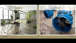 Mold Removal Irvine Ca Flood Removal Irvine Ca