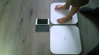 Тест двух весов Xiaomi Mi Smart Scale