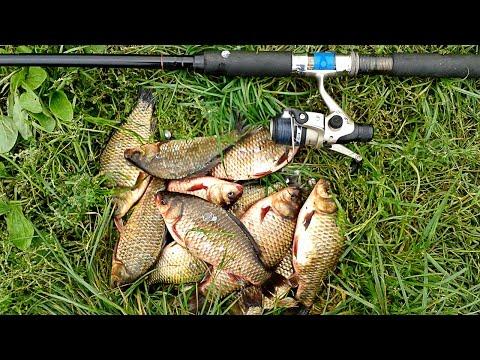 видео про рыбалку на карася приманки