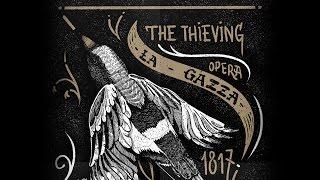 Thieving Magpie. Short version (сериал Интерны, гитара)