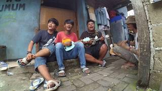 Video main ukulele rapi - pengamen kreatif bawa lagu lagu inspiratif dan lucu - rekam pakai xiaomi yi download MP3, 3GP, MP4, WEBM, AVI, FLV Juni 2018