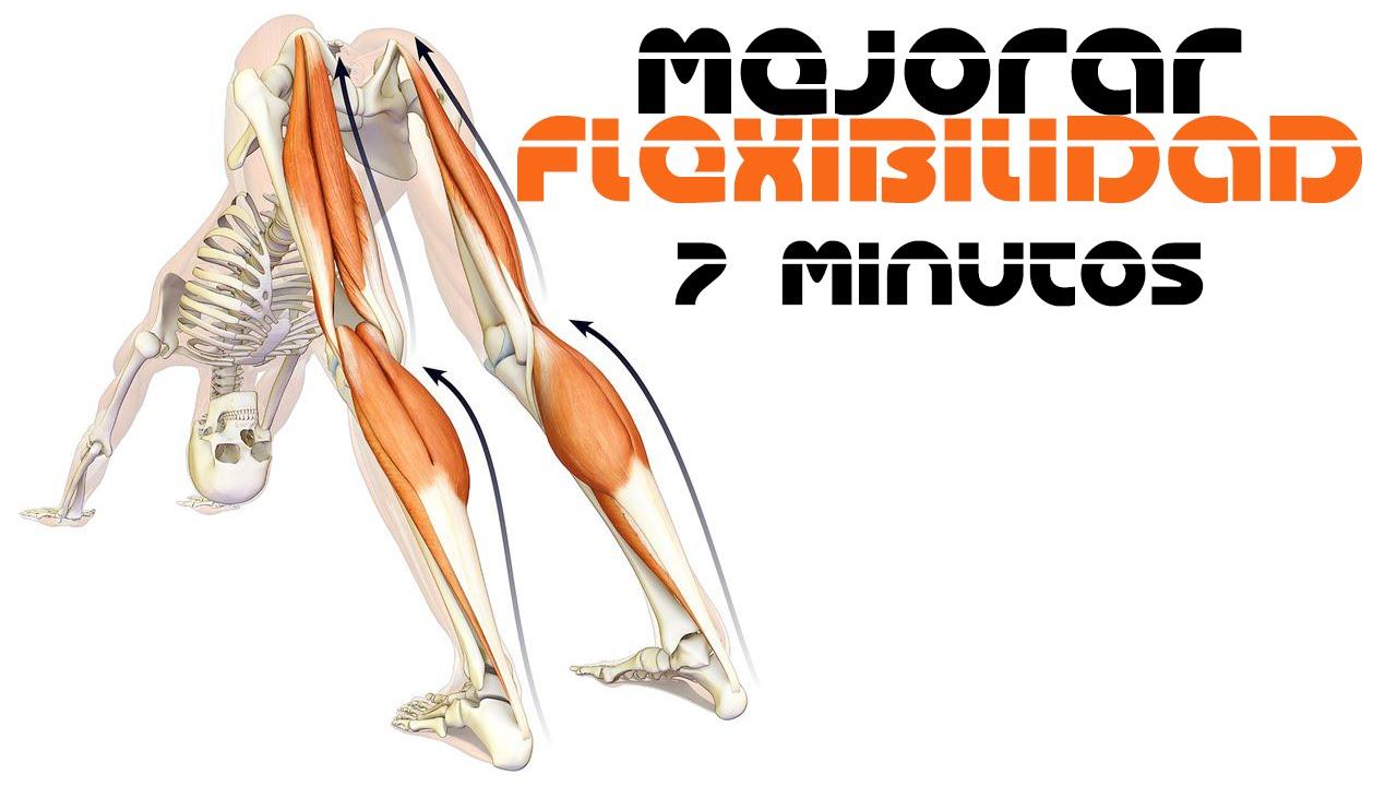 Muscular flexibilidad ejercicios de