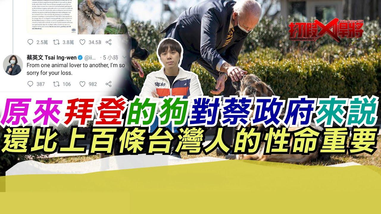 原來拜登的狗對蔡政府來說 還比上百條台灣人的性命重要? 寒國人