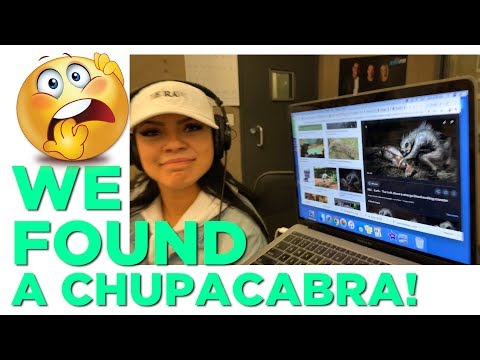 In-Studio Videos - Did We Find An Actual Chupacabra?