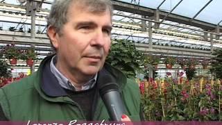 Floricoltura Quaiato - Benvenuta Primavera 2012