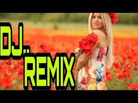 Bhawre Ne Khilaya Phool Dj Remix Video Edt..by...parwez Alam